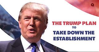 Trump Against The Elite Establishment