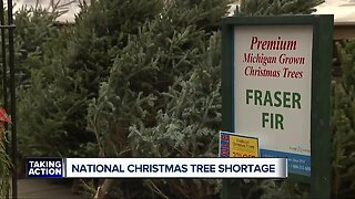 National Christmas tree shortage