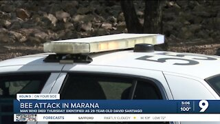 Police: 29-year-old died in Marana bee attack