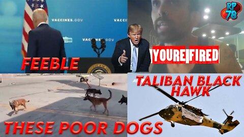 Gold Star Families Refuse To See Biden, Antifa Teacher Fired, Dogs Safe - Sorta