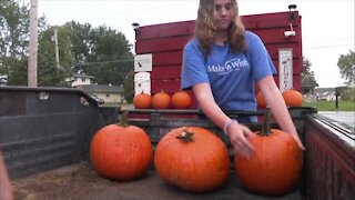 Wish Wagon: Selling pumpkins for Make-A-Wish