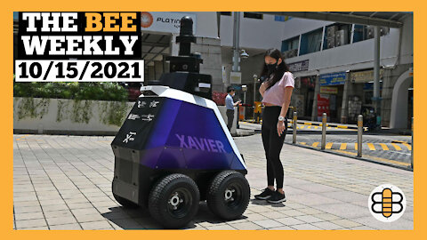 THE BEE WEEKLY: Headlines With Pie, Culture Gets Kunkled, and Robocop is Real