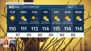 Brutal summer heat continues!