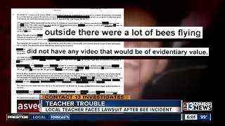 Civil lawsuit alleges Henderson teacher kicked student after bee sighting