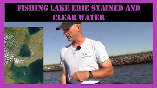 Lake Erie Bass Fishing Report