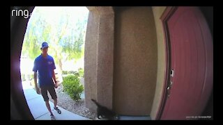 RAW: Video shows man allegedly kicking cat