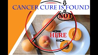 Dodging Cancer: How does stress effect illness? Are alternative treatments really an alternative?