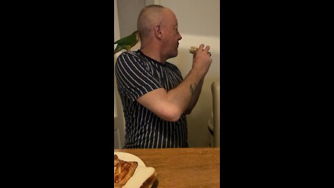 Greedy Bird Attempts To Steal Owners Food