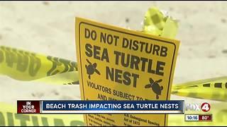 Sea turtle advocates plead for clean beaches