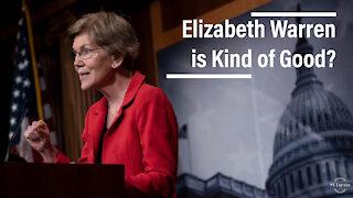 Elizabeth Warren the Hero You Weren't Expecting