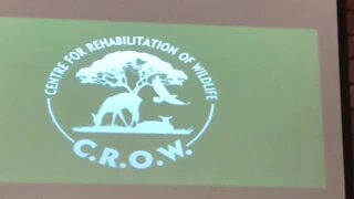 SOUTH AFRICA - Durban - Centre for Rehabilitation of Wildlife (Video) (PVL)