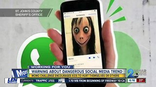 Warning about dangerous social media trend, the Momo Challenge