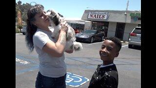 Burglary victim reunited with stolen puppy