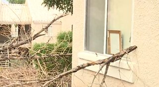 Winds tear through Las Vegas valley overnight
