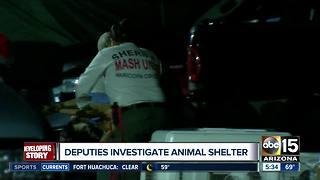 Deputies investigating animal shelter