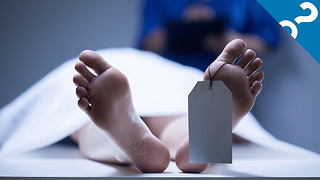 What the Stuff?!: 5 Gross Things That Happen When You Die