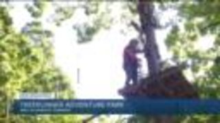 TreeRunner West Bloomfield