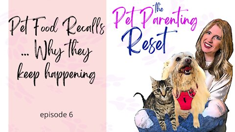 Pet Food Recalls, Why They Keep Happening | The Pet Parenting Reset, episode 6