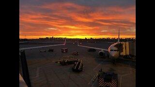 DATE NIGHT! 7 secrets about Phoenix Sky Harbor Airport - ABC15 Digital