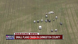 Small plane crashes at Livingston County airport