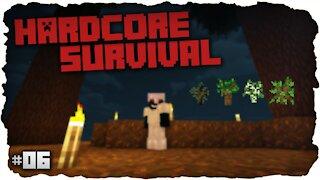 Resource Gathering Timelapse - Hardcore Survival - Minecraft - #6