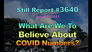 What Are We to Believe About COVID Numbers?, 3640