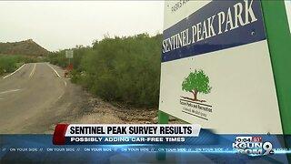 Sentinel Peak survey results