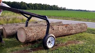 Homemade Log Arch