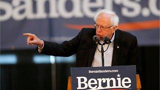 Bernie Sanders Wants To Offset Carbon Emissions