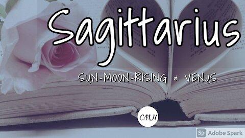 """SAGITTARIUS """"THE SOULMATE"""""""