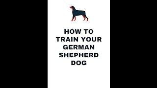 How to Train Your German Shepherd Dog