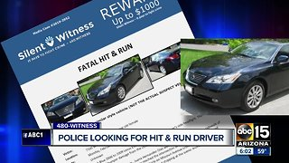 Police looking for hit-and-run driver