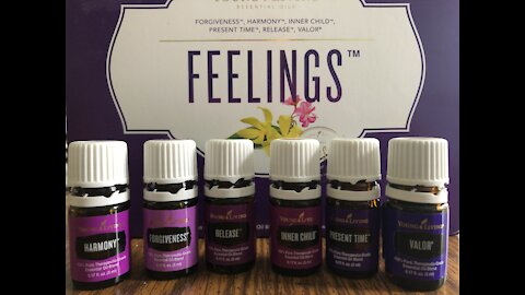 Feelings and Emotional Support