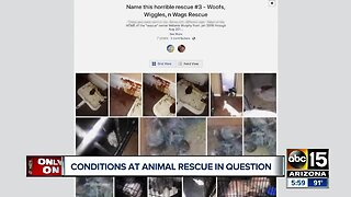 Conditions at Valley animal rescue questioned