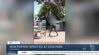 Man pepper-sprayed at dog park