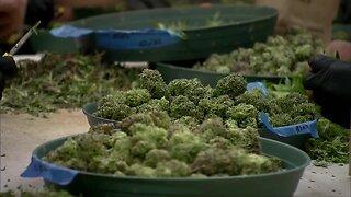 Will New York actually legalize marijuana in 2020?