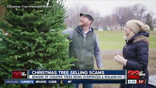 Christmas tree selling scams