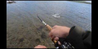 Sea Trout Fishing Sligo