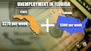 Florida business owners struggle to find workers: 'We shouldn't be competing with the government'