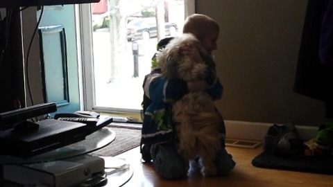 A Boy Falls To The Floor When He Finds His Missing Dog