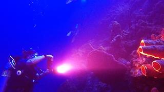 Divers explore mysterious Black Hole dive site