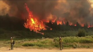Pine Gulch Fire on Western Slope grows to over 20K acres, 7% contained