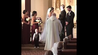 FUNNY KIDS+ WEDDING FAILS