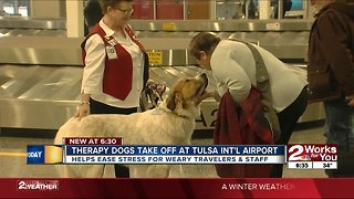 Therapy dogs take off at Tulsa International Airport