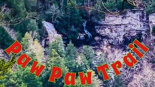 Hiking the Paw Paw Trail - Fall Creek Falls State Park