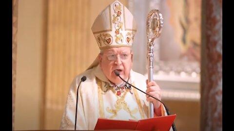 """Cardenal Burke: Fuerzas del """"Gran Reinicio"""" usan el Virus PCCh para cumplir una """"malvada agenda"""""""