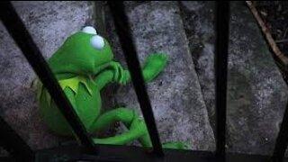 Leftists Cancel Kermit! Disney Labels Muppet Show 'Harmful' and 'Offensive'