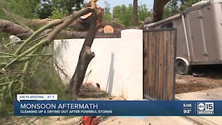 Valley cleans up after massive monsoon storms