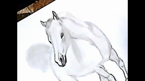 Drawing a white horse