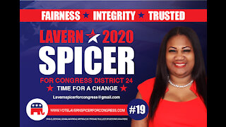 Lavern Spicer Congressional Candidate 24 district Florida